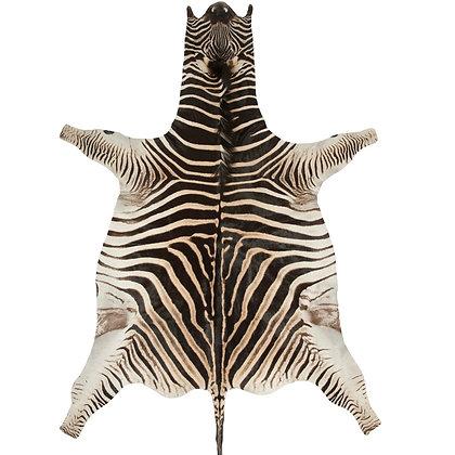 Genuine Burchells Zebra Hide Rug