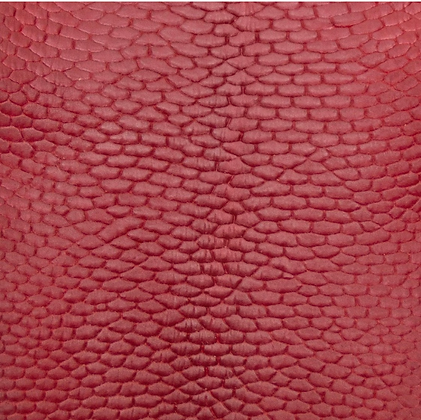 Beaver Tail Leather | Red