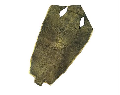 Stingray Leather | Gold | Hologram Polished Finish