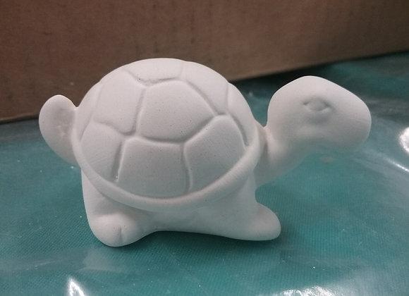 Mini turtle toddy