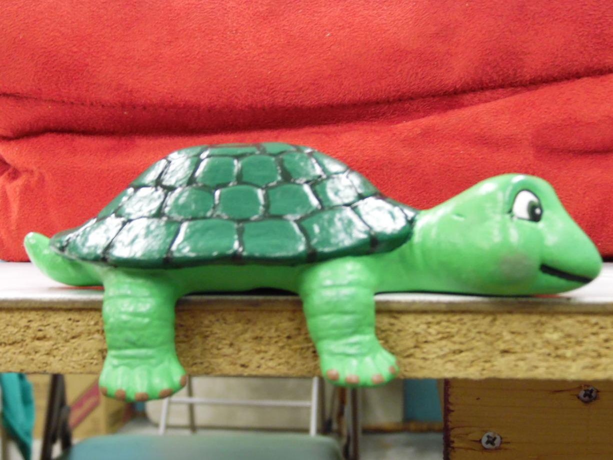 Taushas Turtle
