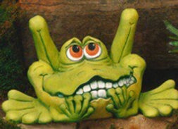 Frustrated Frog