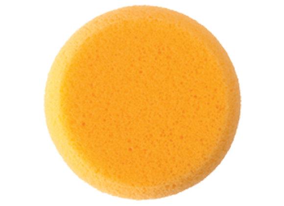 Art Sponge