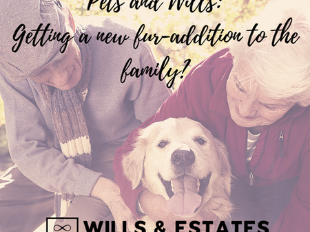 Pets and Wills: Getting a new fur-addition to the family?