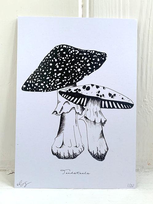 Toadstools Print - A5
