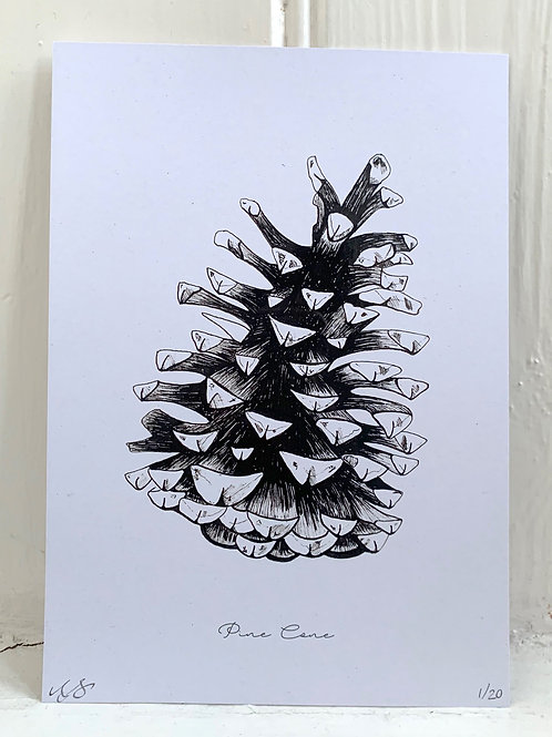 Pine Cone Print - A5