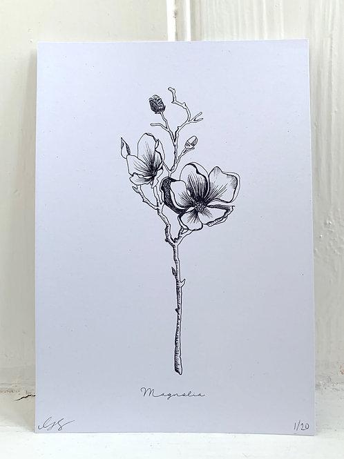 Magnolia Print - A5