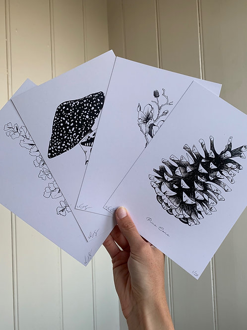 Complete Black & White Flora Prints - 4 X A5