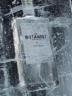 Jarvis Gin Ice 1305.jpg