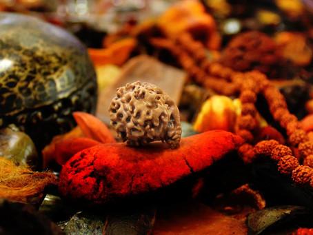 Рудракша терапия: Панч Мукхи Рудракша (Юпитер) = духовная сила