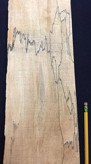 Spalted Maple Live Edge Billet