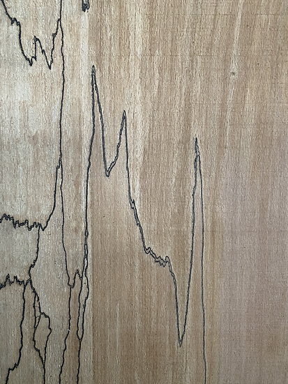 """Spalted Maple & Beech Live edge 1"""""""