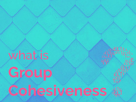 What is Group Cohesiveness?