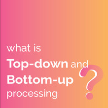 What is Top-down and Bottom-up processing?
