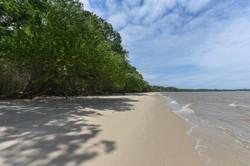 mls_morgarts_beach-43