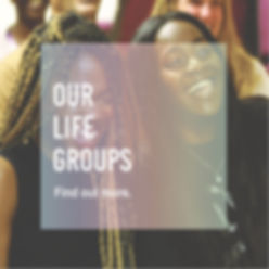 Our life groups-01.jpg