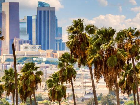 '2020' BOOK EXCERPT: California Love