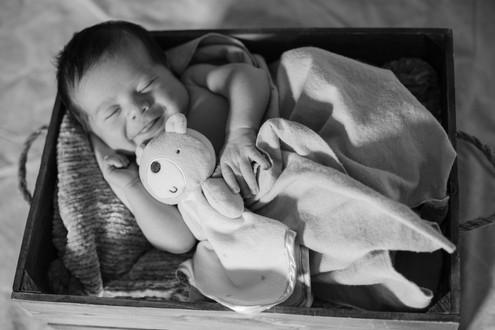 2020-08-18. SE Newborn Session (3).jpg