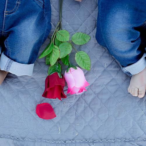 Valentine Minis 2021
