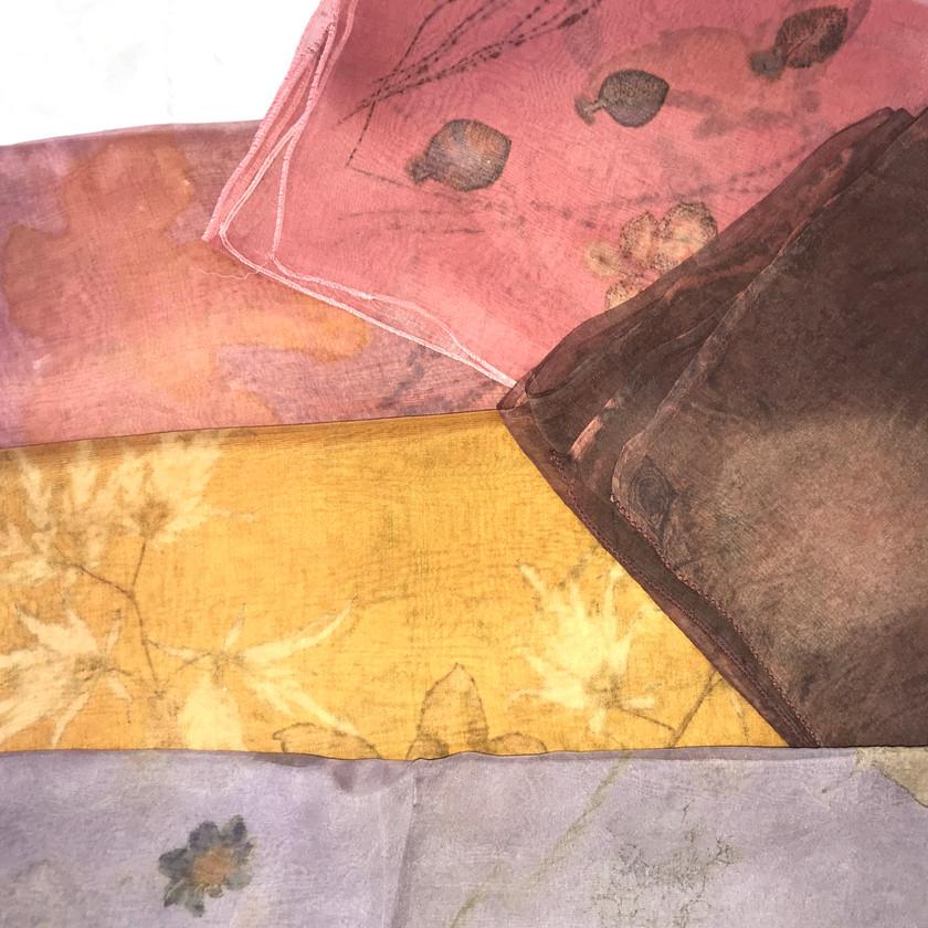 Fall leaf colors in Silk Organ