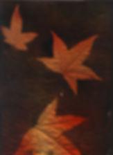 Three Leaves .jpg