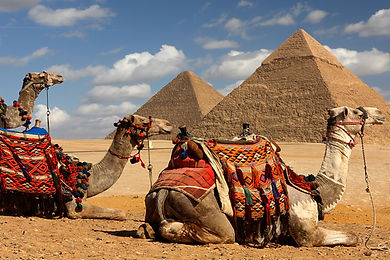 Giza_Camel_Ride3-800x600.jpg