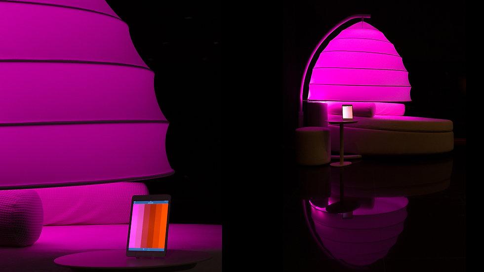coocoon templo-01.jpg