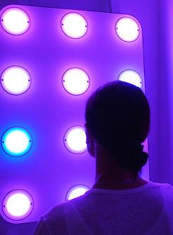 mycoocoon wall.jpg
