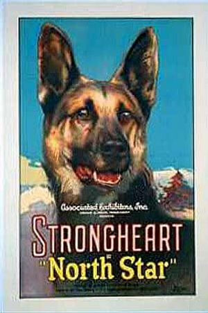 strongdog.jpg