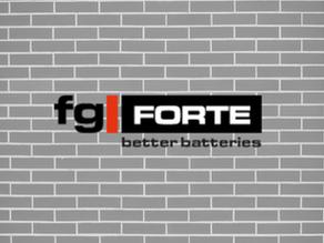 Inovační řízení společnosti  fgFORTE