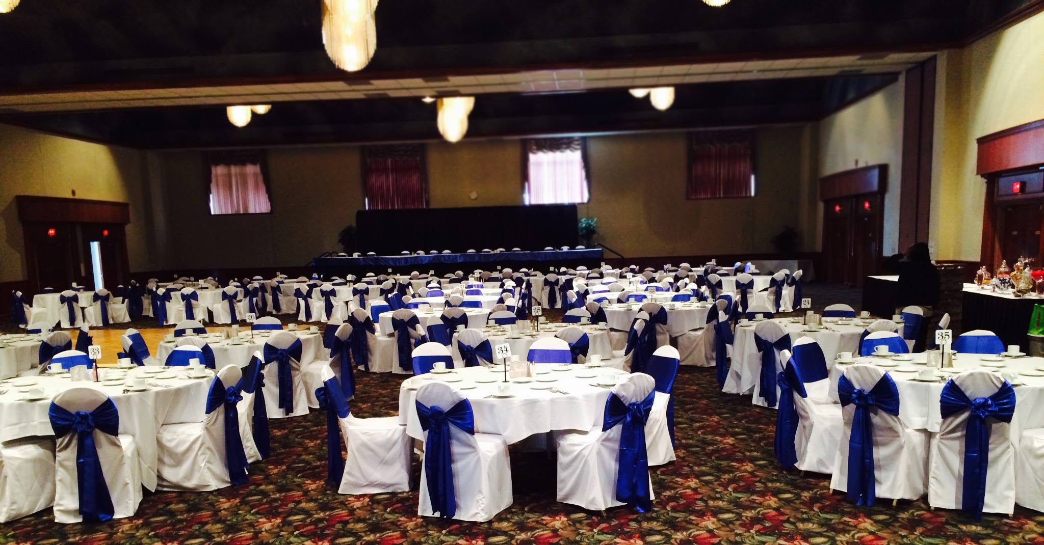Royal Blue and White Reception