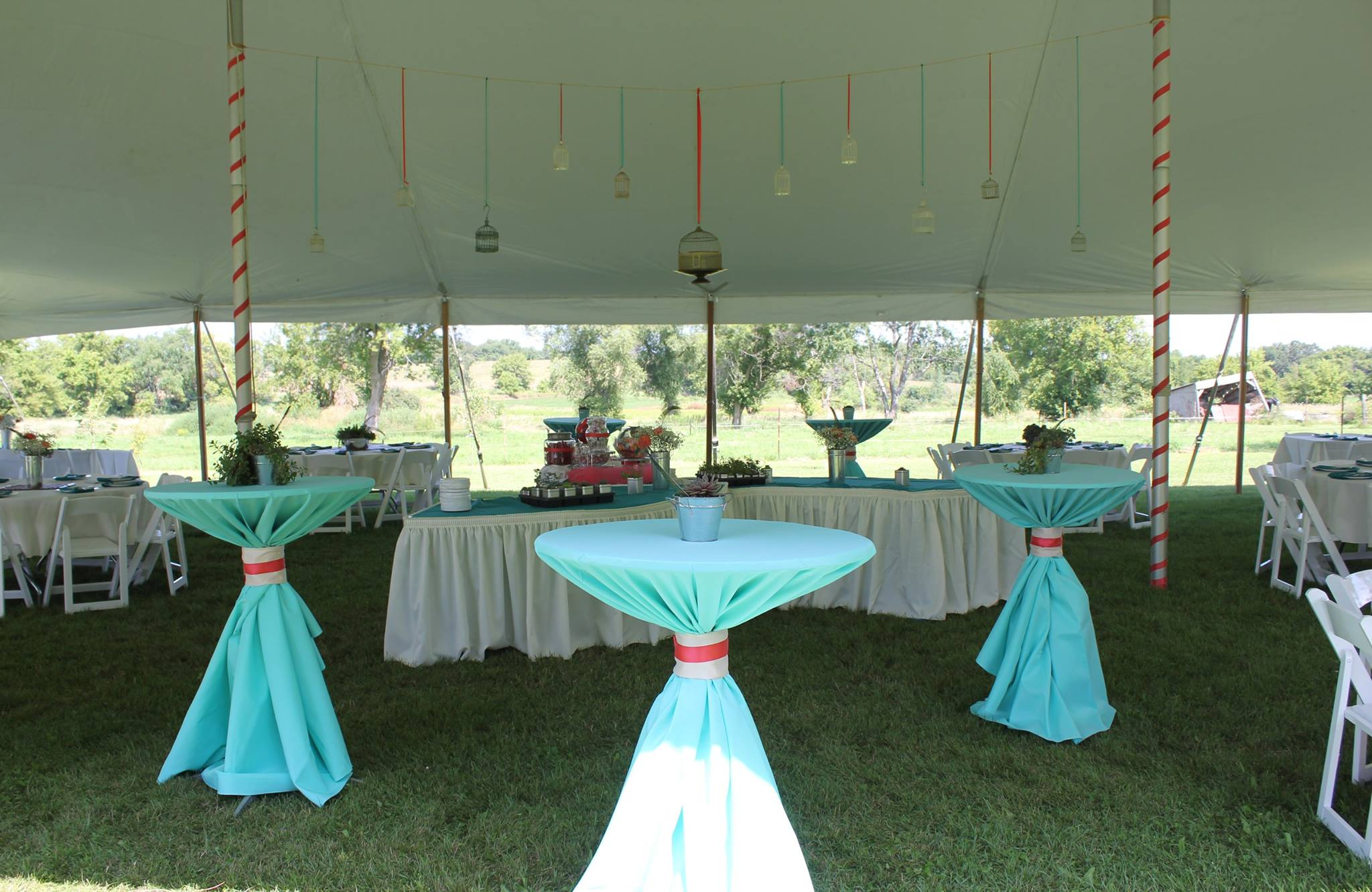 Tiffany Blue and Coral Reception