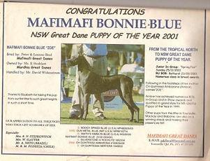 Mafimafi Bonnie Blue