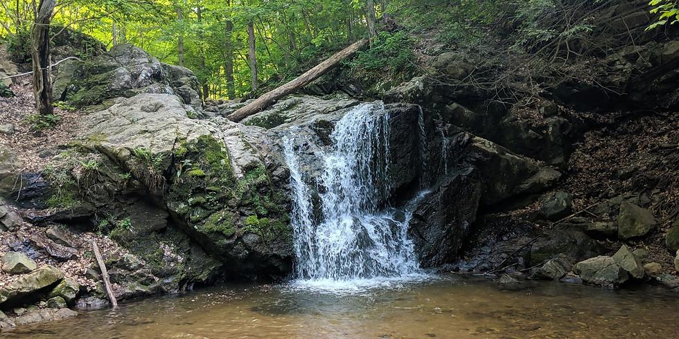 Patapsco Valley State Park: Casacde Falls Loop Trail