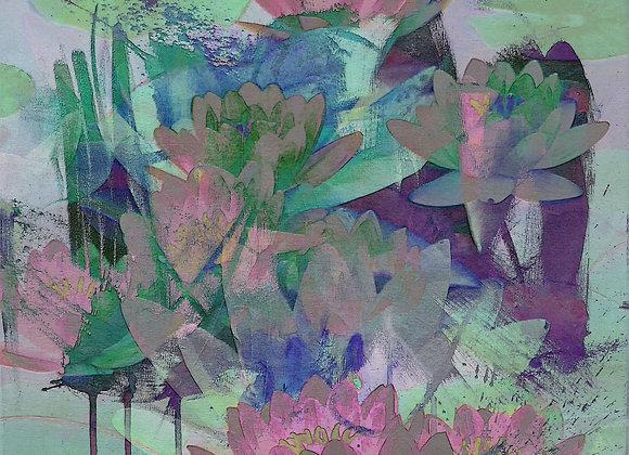 Waterlillies 1