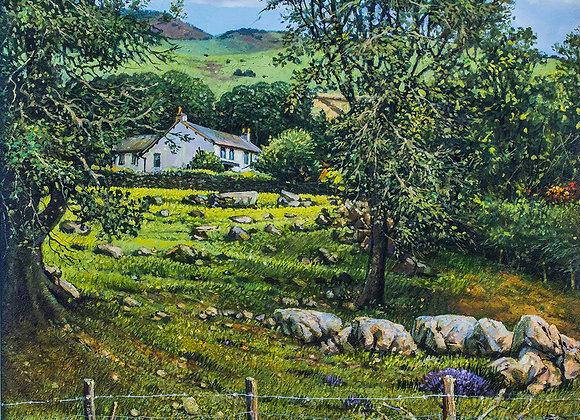 Robert Hughes Liverpool Artist 7