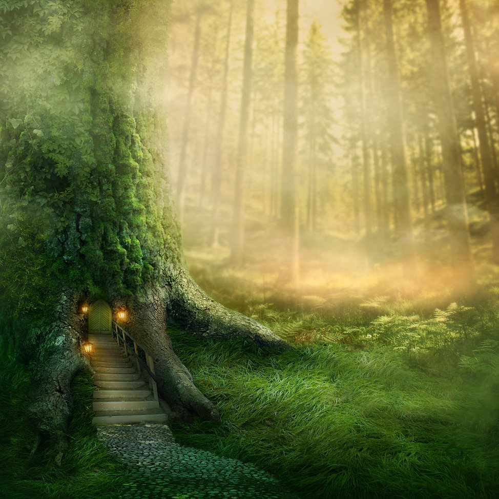 Fantasy tree house in forest.jpg