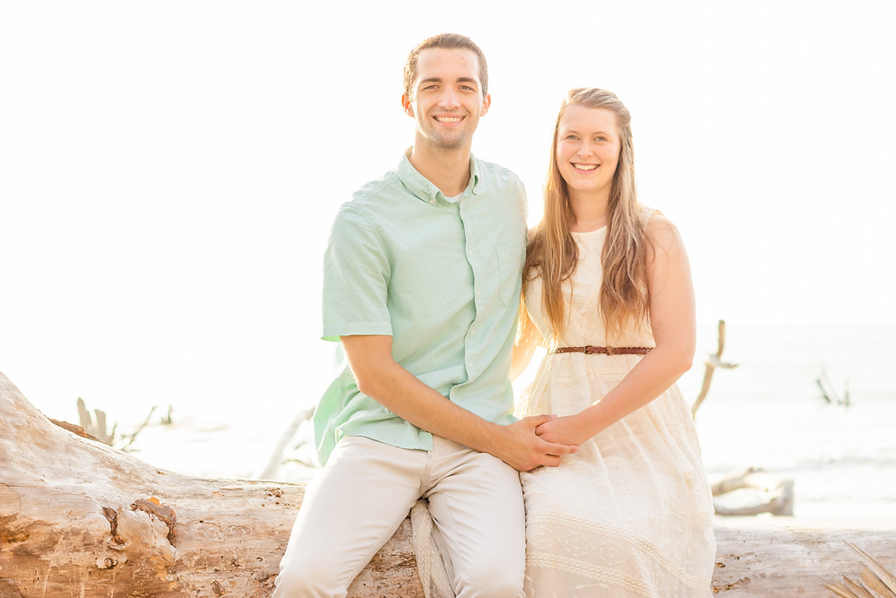 Couple sits on a tree at the beach and hold hands