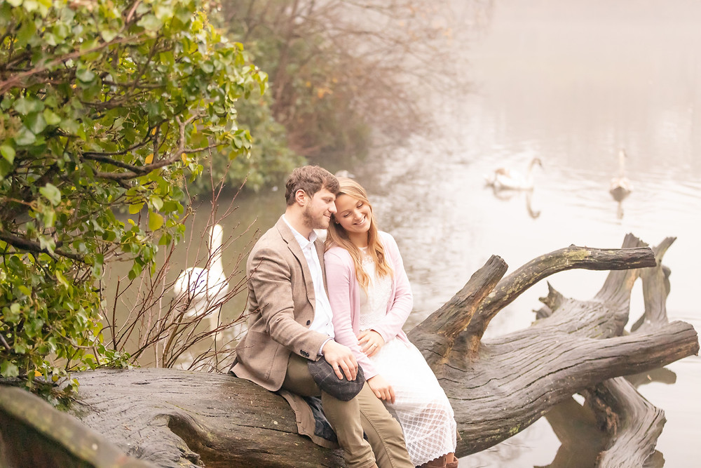 a couple sit on a fallen tree and think about their happy future together while swans swim in the pond behind them