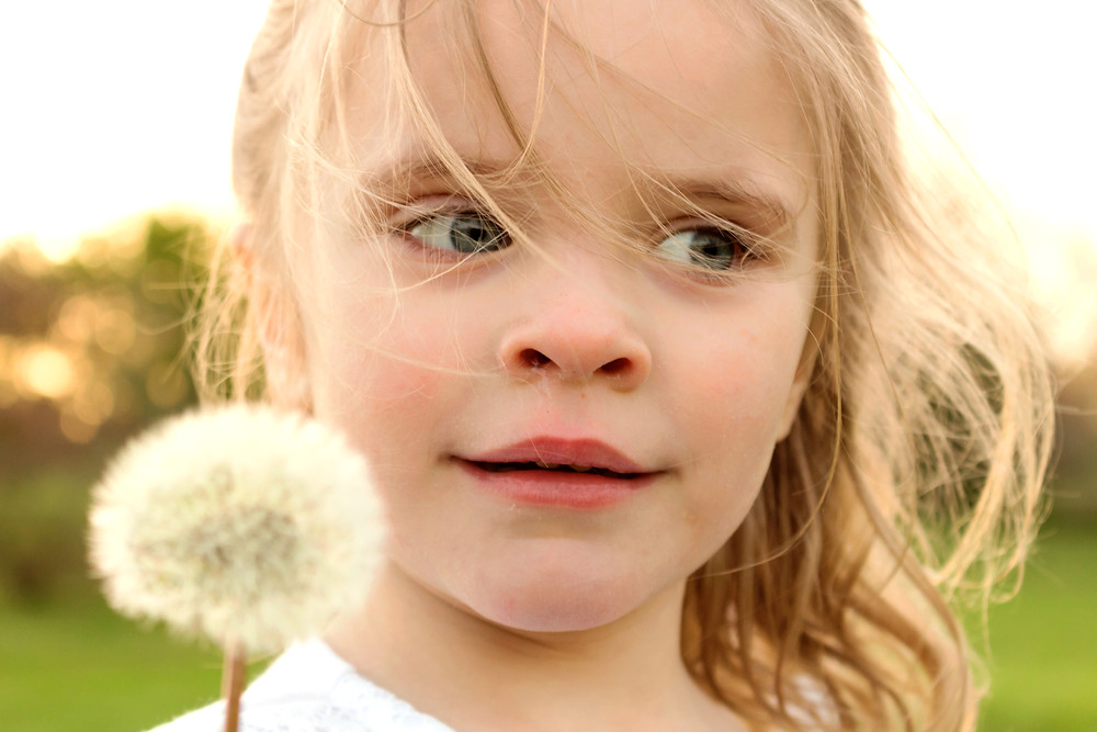 Precious little girl holds a dandelion during a photo shoot with Devon photographer