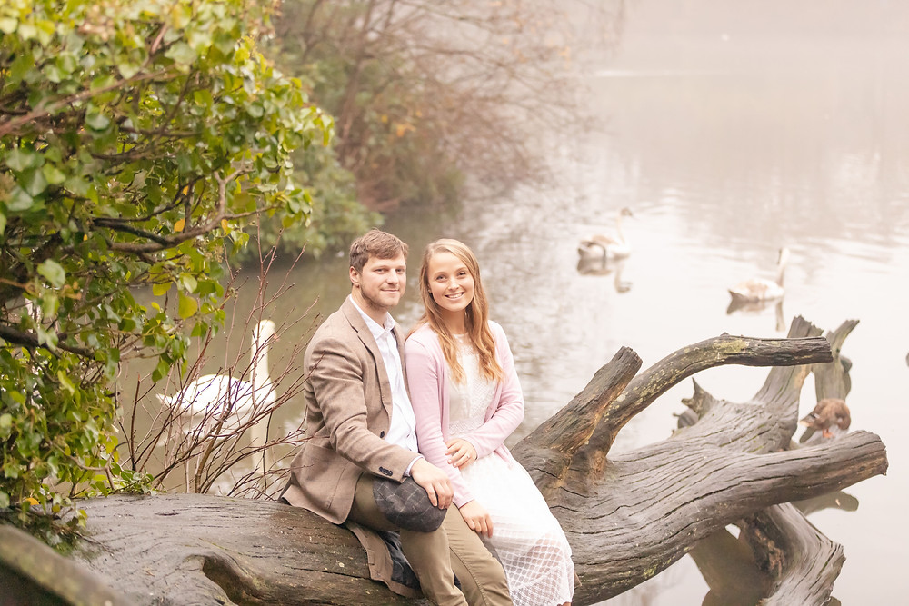 engaged couple sits on a log while swans swim on the lake behind them