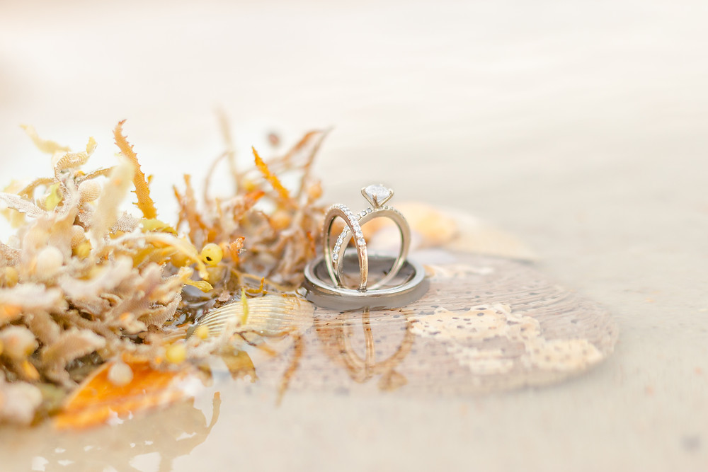 Engagement ring rests inside a man's wedding ring sitting in the water on seashells and seaweed