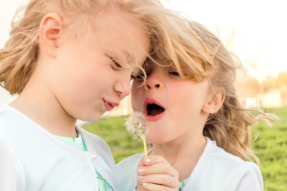Two sisters blow on a dandelion during a family portrait shoot