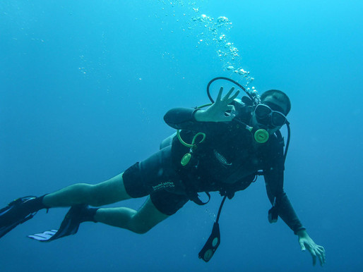 Learn Hebrew While Diving (Eilat)