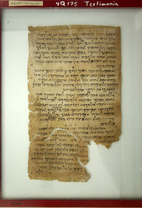 One of the scrolls