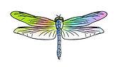 Dragonfly Clip Art.jpg