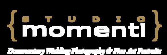 logo-new-vi.png