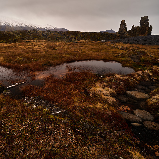 Tourbiéres islandaises