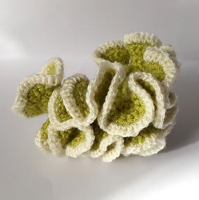 crochet coral handmade diy free pattern green white hyperbolic ravelry pinterest fat cat crochet