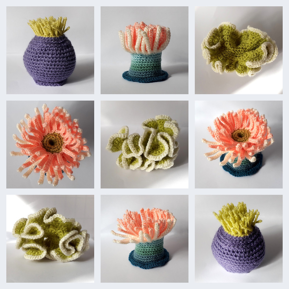 crochet coral anemone pink purple green